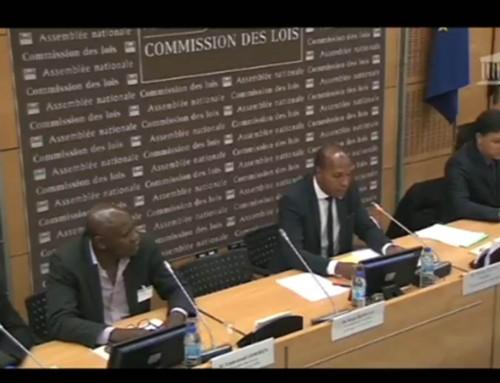 Mémoire de l'esclavage au Parlement : sortir du «déni d'humanité originel»